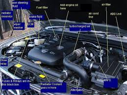 engine bay diagram please the navara forum