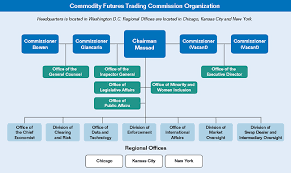 Intercontinental Exchange Organizational Chart Cftc Agency Financial Report 2015