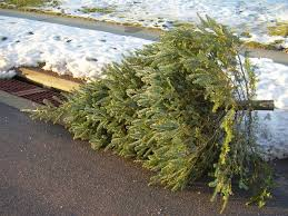 What Day Do You Take Your Christmas Tree Down On