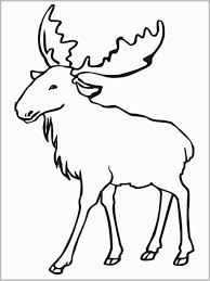 Coloring Pages Printable Jungle Animals Coloring Pages Free Animal