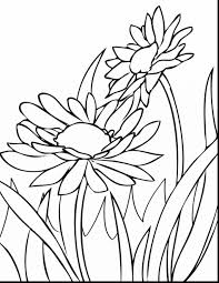 Small Picture Coloring Pages Spring Flower Printouts Flowers Ideas Spring