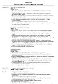 Claims Manager Resume Claims Manager Resume Samples Velvet Jobs 1