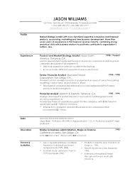 Summary Of Experience Resume Resume Profile Samples Strikingly