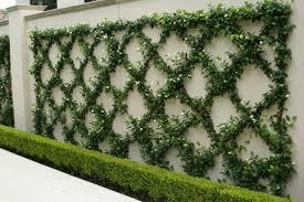 Small Picture Garden Designers
