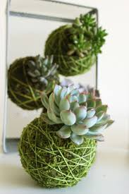 String Planters \u2013 A New Trend Bringing Us Closer To Nature | Twine ...