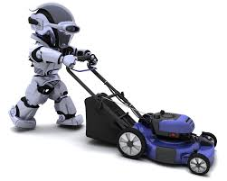 robot lawn mower without perimeter wire