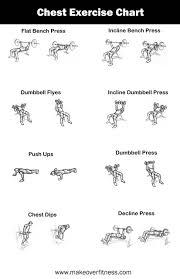 Exercise Chart For Men Chest Exercise Chart