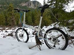 Llama Snow Bike Friday