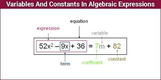 expressions equations and inequalities unit 3 rational expression equation calculator inequality worksheet algebraic