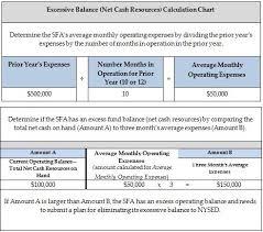 Net Cash Resources And Excess Fund Balances Child
