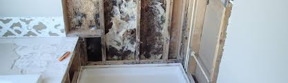 mold issues in the shower surround can be broken into two broad categories surface mold growth and mold behind the surround