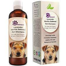 Amazon.com: Vanilla Oatmeal Dog Shampoo with Lavender - Colloidal ...