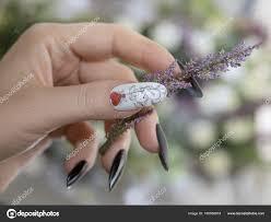 Dlouhé Nehty Malování Nehtů Manikúra Stock Fotografie