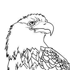 Small Picture Bald Eagle with Smooth Feather Coloring Page NetArt