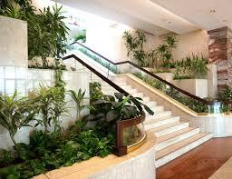 Plant Interior Design Cool Decoration
