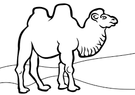 Small Picture Bactrian Camel coloring page Free Printable Coloring Pages