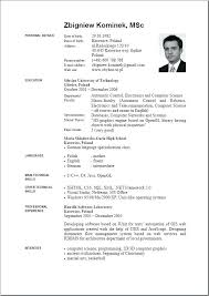 Different Resume Format Sample Resume Format Download Resume Format In Word Template Resume