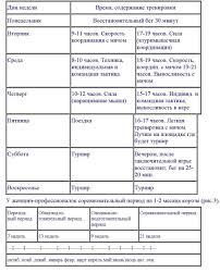 Планирование и организация тренировок и соревнований годичный  Схема годичного цикла подготовки в пляжном волейболе Профессионалки wpva