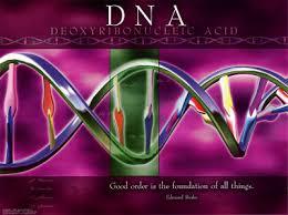الحمض النووي الوعد والثمن