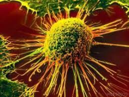 علاج السرطان بالارداه