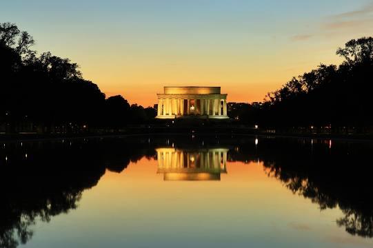 Tree Removal Washington DC