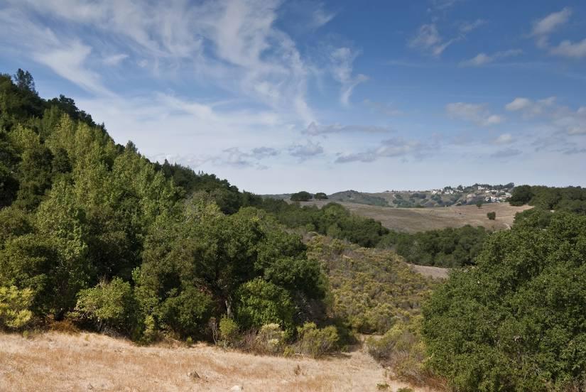 San Carlos, CA Homes For Sale