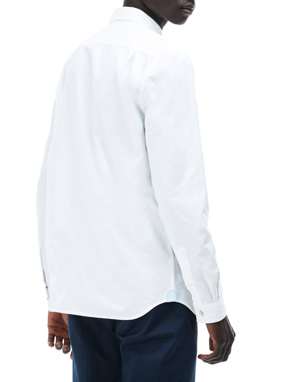 Lacoste Oxford Baumwollhemd Weiß 46 Mit Regulärer Passform rgRqUfwr