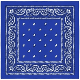 Paisley Cotton Bandana, Blue