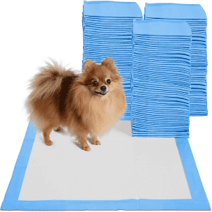 Pet Needs Ultra Absorbent Puppy Training Pads -60x90cm (Count-20)